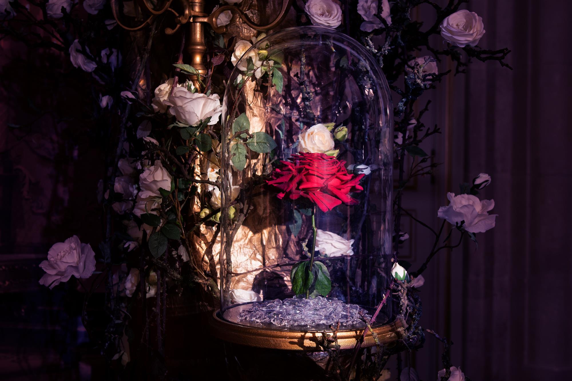 Compositions Florales Evenementielles